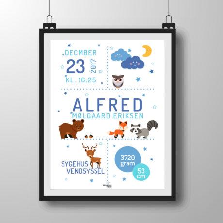 skovens dyr plakat - blå