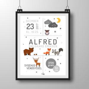 skovens dyr plakat - grå
