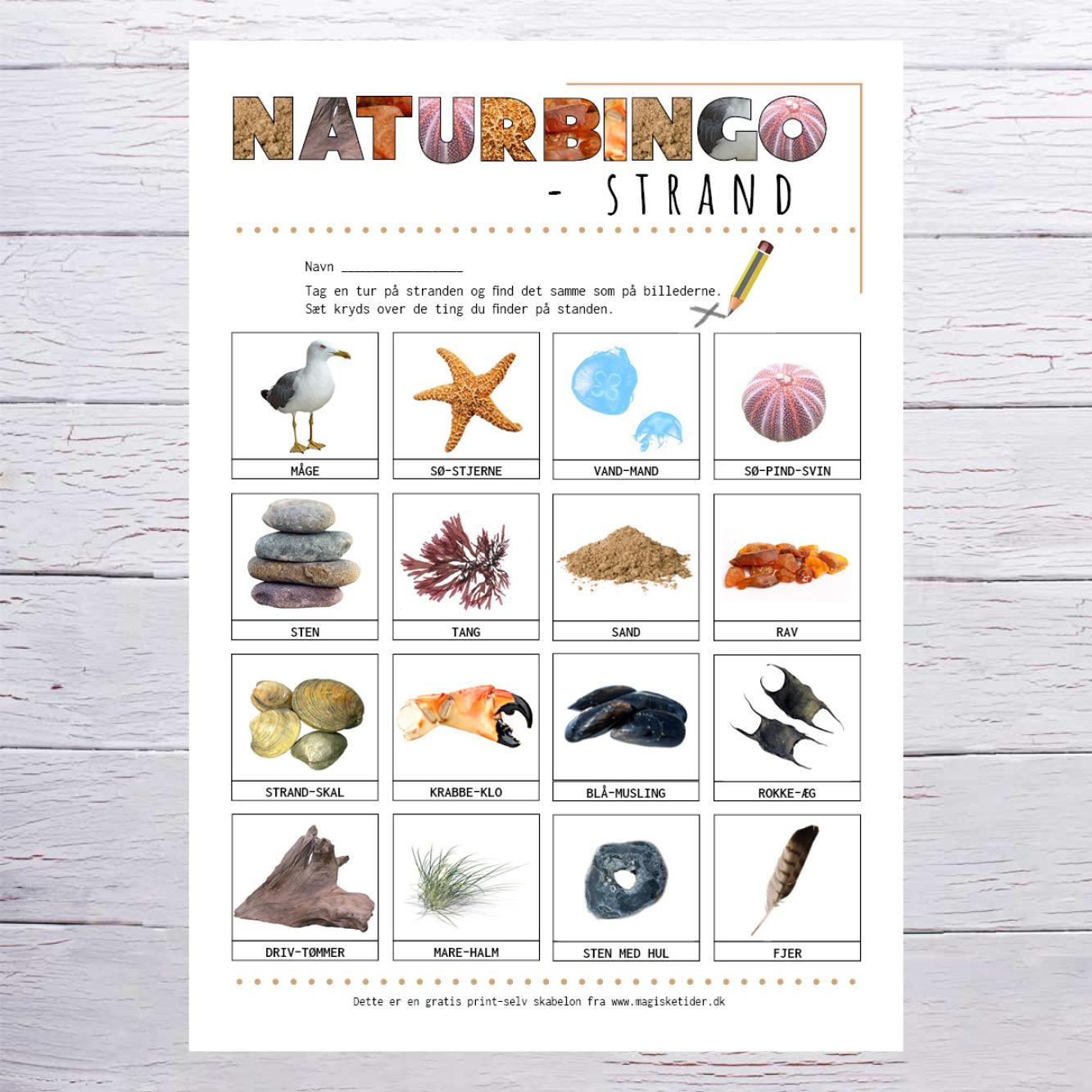 Naturbingo - strand