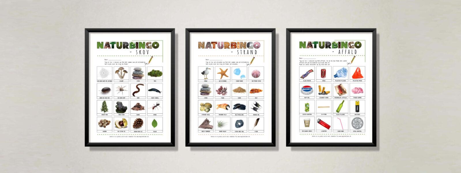 Naturbingo i tre forskellige opsætninger